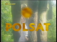 Polsat94-96-2