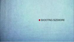 Shooting Sizemore