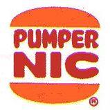 Pumer Nic Old Logo