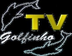 TV Golfinho 2001
