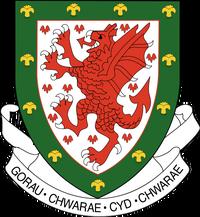 Wales FA