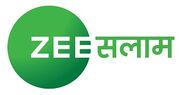 Zee Salaam Hindi Logo