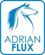 Adrian Flux Official Partner 610