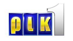Rik logo2