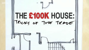 The100KHouseTricksoftheTrade