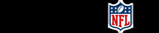 Madden 19 SE logo 800x400 en US v3