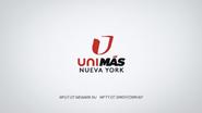 Wfut wfty unimas nueva york id 2013