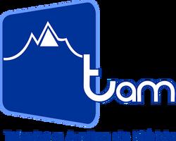 Logo de TAM 2000-2007