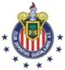 Cdgdl1984