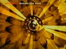 Rete 4 - flower 1999