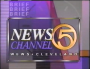 WEWS Newsbrief 1994