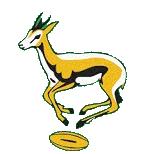 Springboks 1963-64