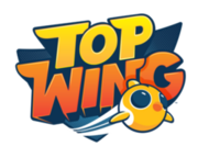 250px-Top Wing logo