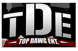 TDE logo 2008