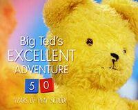 Big-Teds-Excellent-Adventure-50-Years-Of-Play-School