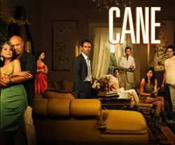 Cane (TV show) cast