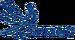 Grupo Spring logo