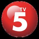 TV5 Logo (2010-2015)
