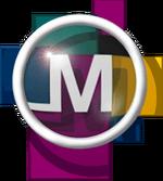 Mosaic Communications Corp logo