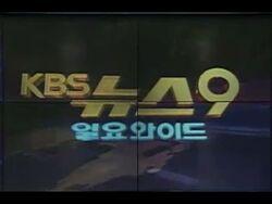KBS News 9 Sunday Edition 1995