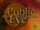Public Eye with Bryant Gumbel