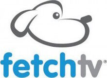 FetchTV logo2010