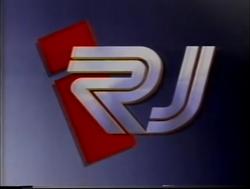 Informe Rio (1995)