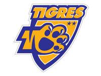 Tigres de la UANL 2