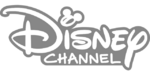 Disney Channel Silver 2018 On Screen Bugs Logo