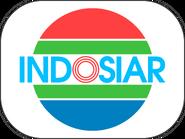 INDOSIAR 1995