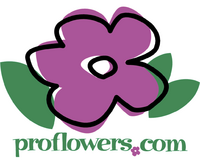 Proflowers.com 1998 logo