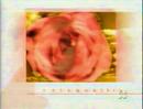 Rete 4 - rose 2003