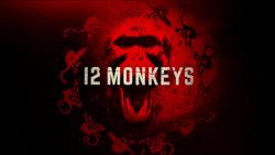12 Monkeys TV Intertitle