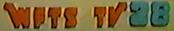 WFTS 1981