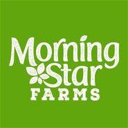 Morningstar4