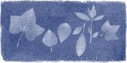 Anna Atkin's 216th Birthday Google Doodle