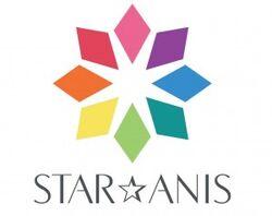 Star-anis logo-300x237