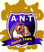 Amnat Town 2011