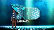 DisneyXDLabRatsBumper