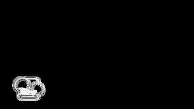 Disney Channelon Screen Watermarks Logopedia Fandom Powered By