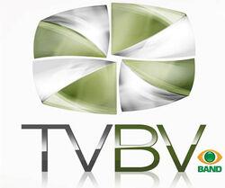 Tvbv 2008