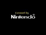 Nintendo/Other