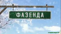 Фазенда2014новогодняя
