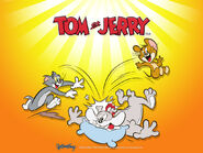 Tom-jerry-wallpaper-tom-and-jerry-5227308-1024-768