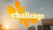 Challenge ID 2008 5