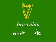 Juvernian retro startup 1995