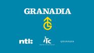 Granadia retro startup 2002