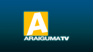 Araiguma TV 1990 HD Remake