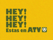 Antena2007 1