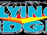 Flying Edge (East and West Cybersland)